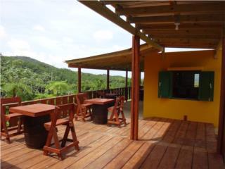 Restaurante, Finca con 15 cuerdas, Fajardo, Fajardo Real Estate Puerto Rico