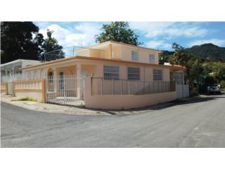 VENTA CASA DOS PLANTAS EN SAN LORENZO, San Lorenzo Real Estate Puerto Rico
