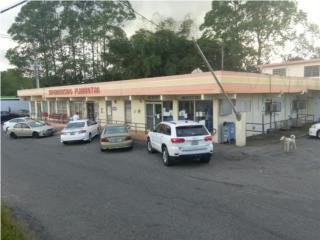 Amplio Edificio Comercial,Bo. Angeles, Utuado, Utuado Real Estate Puerto Rico