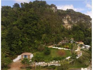 RESIDENCIA FAMILIAR EN VENTA, ESPECTACULAR, Lares Real Estate Puerto Rico