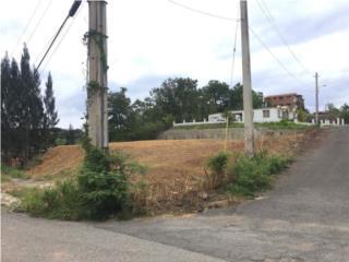 Terreno aguada 1822mt bo. Asomante, Aguada Bienes Raices Puerto Rico