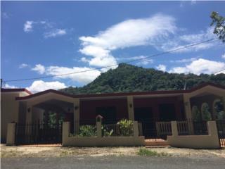 Casa Grande, 6 cuartos, 4 ba, Negocio Aparte, Ciales Real Estate Puerto Rico