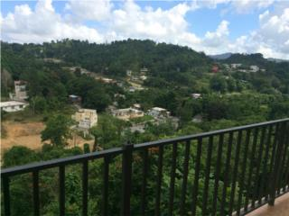 Solo para Emprendedores , Cayey Real Estate Puerto Rico