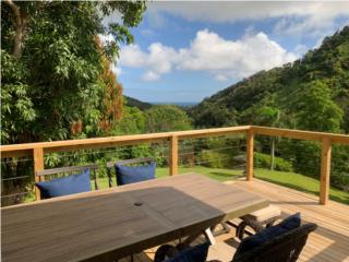 30 Acre Estate Farm with Creek and Falls, Luquillo Real Estate Puerto Rico