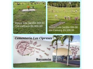 Clasificados Panteones  Lotes Cementerio Puerto Rico