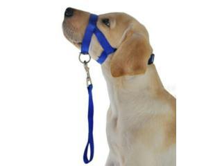 Gentle Leader Dog Puerto Rico