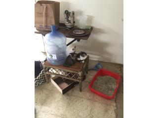 Gatos 1/2 siameses  Puerto Rico