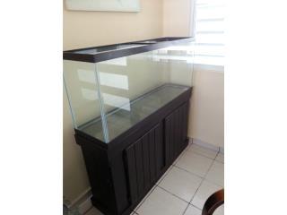 Pecera  55gls con mueble no accesorios Puerto Rico