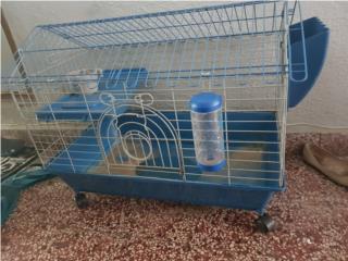 Jaula conejo guimo Puerto Rico
