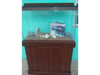 PECERA 30 GALONES $200 Puerto Rico