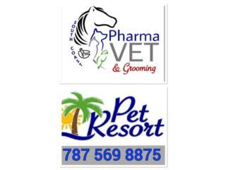 South Coast Pharmavet & hotel Puerto Rico