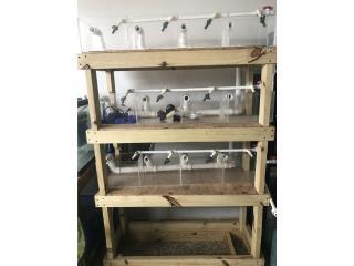 Cubiculos en acrilico con su stand en madera Puerto Rico
