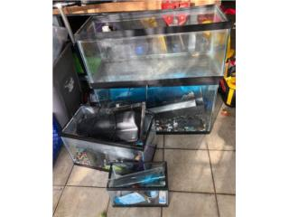 4 peceras con material acuatico, 20g-10- y 5 gals Puerto Rico