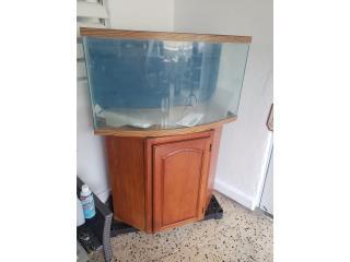 Pecera 36 galones, cristal curveado Puerto Rico