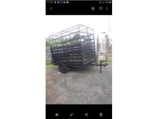 Puerto Rico Carreton Liviano, Perros Gatos y Caballos