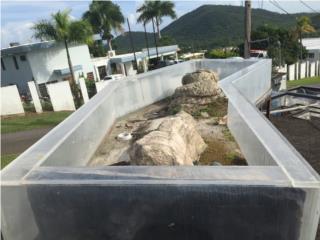 Peceras grandes en acrílico  Puerto Rico