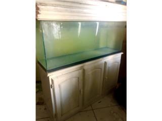 Pecera de 55 galones con mueble Puerto Rico