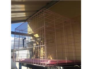 Jaula para Aves o Perrita Puerto Rico