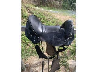 Silla de caballos  Puerto Rico