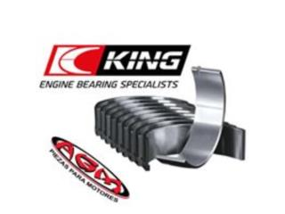 BEARINGS KING Puerto Rico AGM