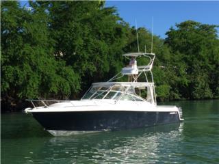 Contender 38 Express 2008 Puerto Rico