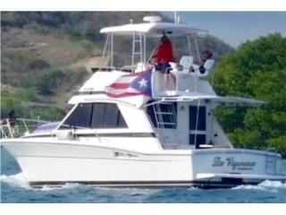 Riviera 34 '99- Will trade C/C or W/A 30' +  Puerto Rico
