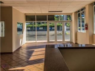 Commercial Office Building on Road # 2, Dorado Bienes Raices en Puerto Rico