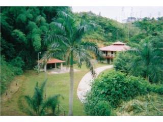 Chalet en Villa Sauceo, Bo Caguitas, Aguas Buenas Clasificados