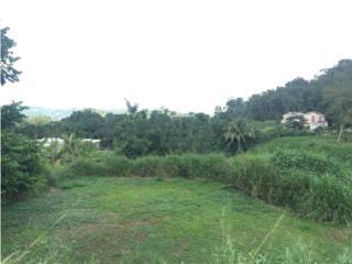 BELLO SOLAR PREPARADO, BAIROA, LOS CURAS, Caguas Real Estate Puerto Rico