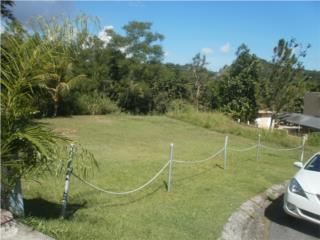 Urb. Palmas del Turabo control de acceso REBAJADO, Caguas Bienes Raices Puerto Rico