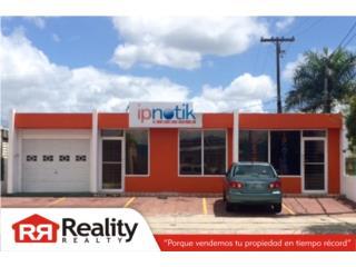 Ave. Luis Mu�oz Mar�n, Caguas Real Estate Puerto Rico