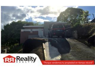 Bo. Valenciano Abajo, Juncos Real Estate Puerto Rico