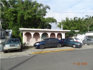Bienes Raices CASA Y LOCAL COMERCIAL  Puerto Rico