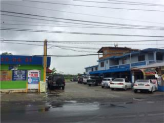 Prop. Comercial en Juncos frente a AMGEN, Juncos Real Estate Puerto Rico