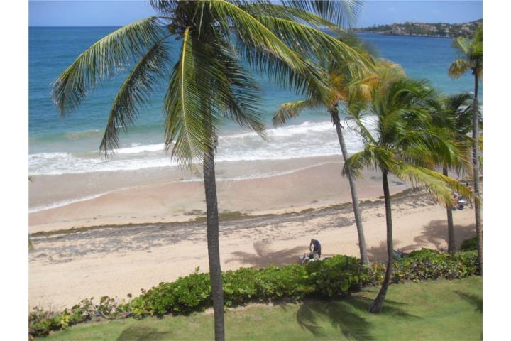 Crescent Beach Building  Palmas