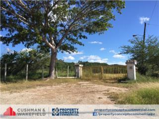 Santa Isabel- Agricultural Land For Sale, Santa Isabel Real Estate Puerto Rico