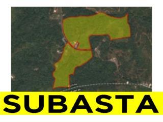 BO. PORTILLO, CARR. 129 KM. 5.0, UTUADO - SUBASTA, Utuado Real Estate Puerto Rico