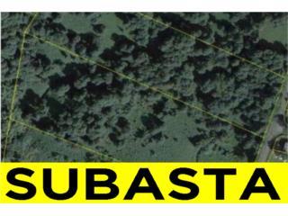 BO. BORINQUEN, SR 763 KM 0.3, CAGUAS - SUBASTA, Caguas Real Estate Puerto Rico