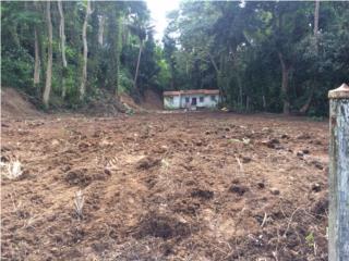 Bienes Raices Yabucoa Puerto Rico