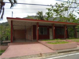 Carr. 144 km. 8.5 Lote 9 Bo. Coabey, Jayuya Real Estate Puerto Rico