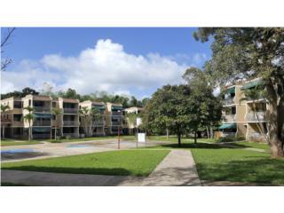 Apto. en Excelentes Condiciones y Enseres, Caguas Real Estate Puerto Rico