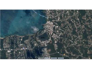Bienes Raices 19.64 cdas land with ocean views in Vieques  Puerto Rico