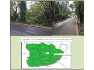 PR 155 Km 54.4 FRANQUEZ & BARAHONA WARD, Morovis Bienes Raices Puerto Rico