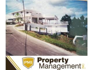 Corozal vistas panoramicas, Corozal Real Estate Puerto Rico