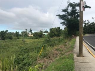 DOS SOLARES COMERCIALES, SALIDA HACIA COMERÍO, Cidra Real Estate Puerto Rico