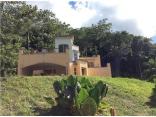 Bienes Raices Gurabo Puerto Rico