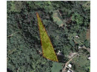 Bo. Guavate Carr. 184 Km. 29.2 Int. Lote 8-A, Cayey Real Estate Puerto Rico
