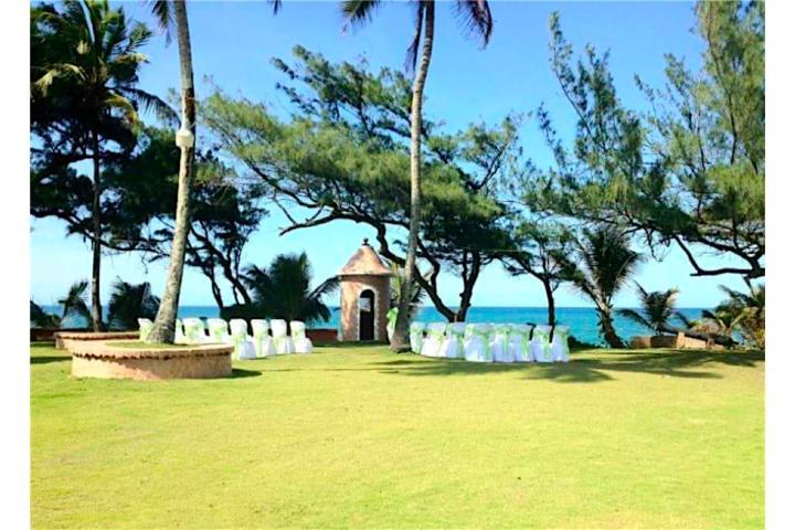 The Most Popular Places in Arecibo, Puerto Rico | CitySmart