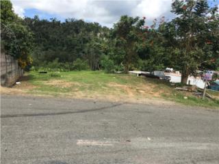 Bienes Raices Venta de Solar Bo. Rosario  Puerto Rico