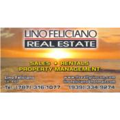 Lino Feliciano Real Estate Puerto Rico